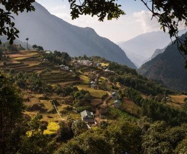 Zielono na drodze do Phakding