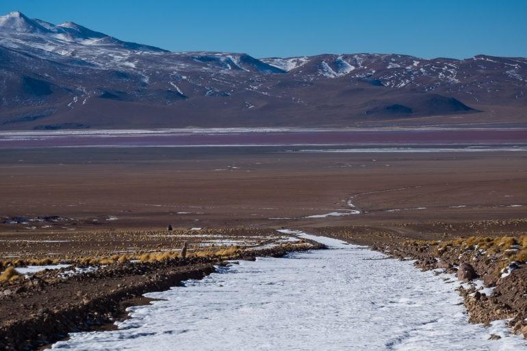 Dojeżdżamy do Laguna Colorada, zaraz zobaczymy flamingi