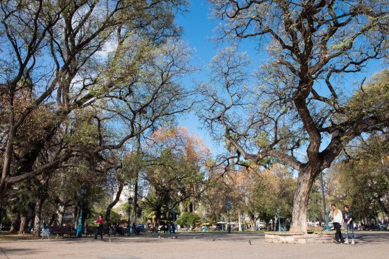 Plaza Independencia - główny plac w Mendozie