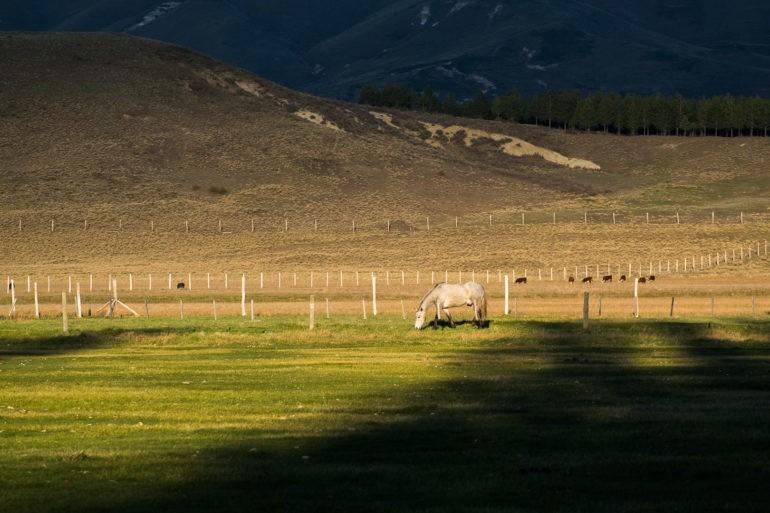 Widok z naszego ostatniego noclegu przed Junín de los Andes