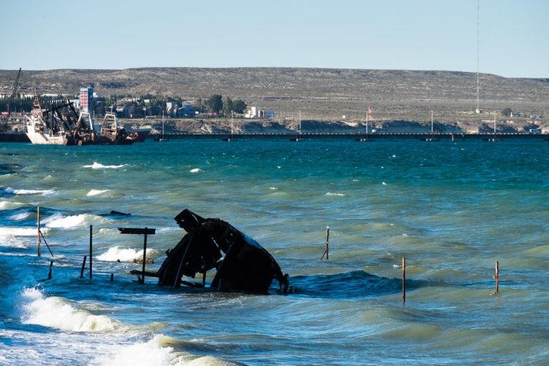 Wypatrując wieloryba w drodze do nowego znajomego