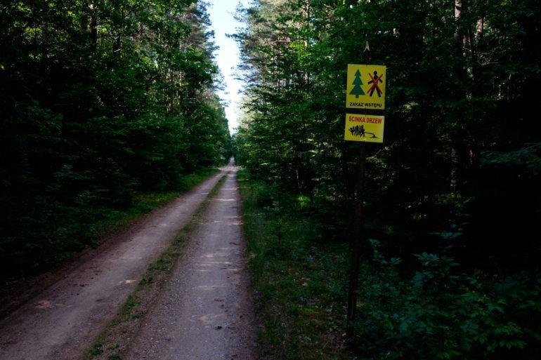 Znaki informujące o wycince i zakazie wstępu występują na wielu drogach leśnych i szlakach turystycznych.