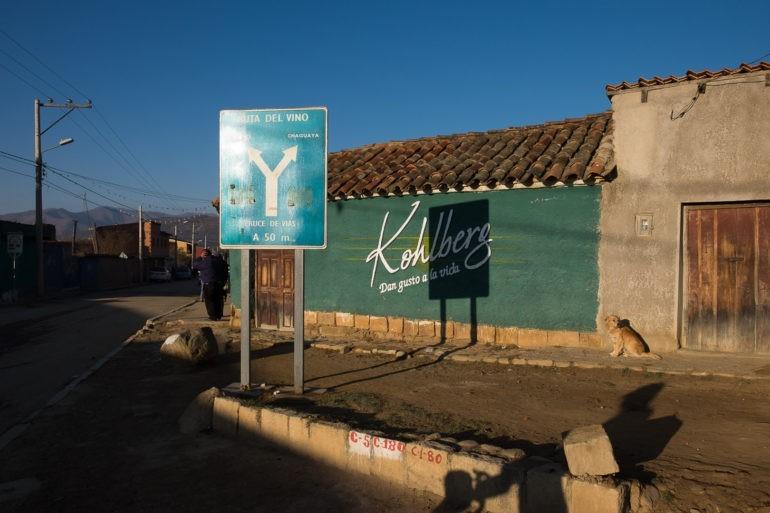Szlak wina to najsłynniejsza reklama regionu Tarija