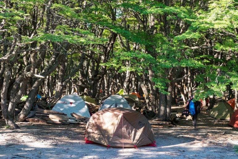 Pole namiotowe Poicenot