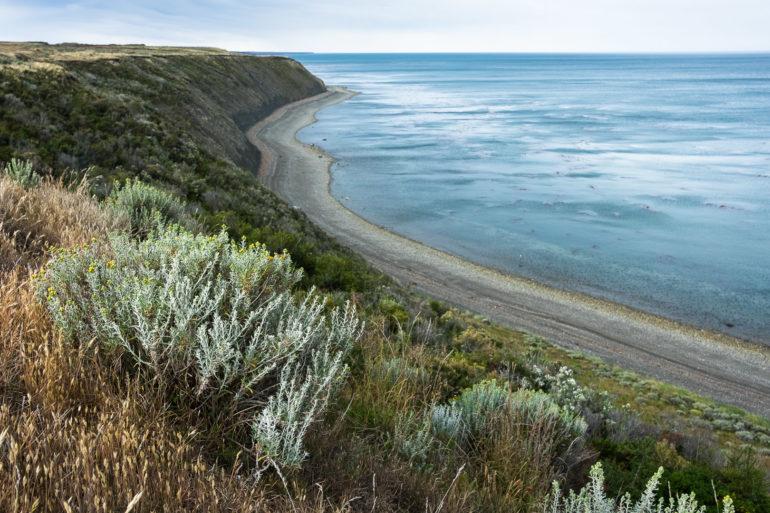 Jadąc do Punta Arenas patrzymy na Cieśninę Magellana