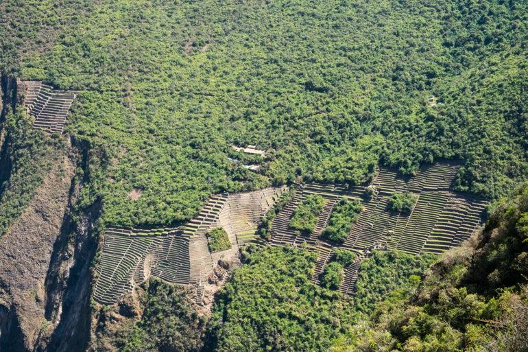 Choquequirao - inkaskie ruiny, do których wtargnęła roślinność, ale jeszcze nie wtargnęły setki turystów