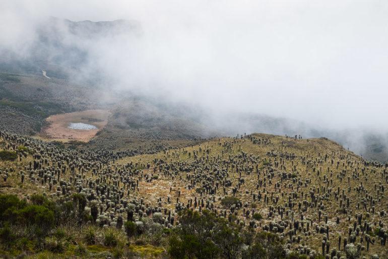 Chmury przesłaniają przełęcz przed Belén